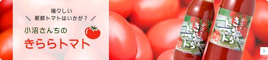 小沼さんちのきららトマト