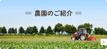 農園のご紹介